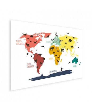 Dieren kleuren poster